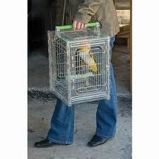 This compact acrylic and stainless steel bird carrier is great for small to medium parrots.