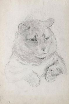 Tom Cat by Louis Wain Picture: Chris Beetles Gallery