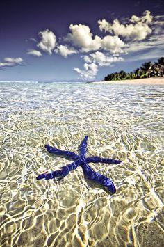 Tahiti, Bora Bora, Dream Vacations, Vacation Spots, Italy Vacation, Romantic Vacations, Romantic Travel, Places To Travel, Places To See