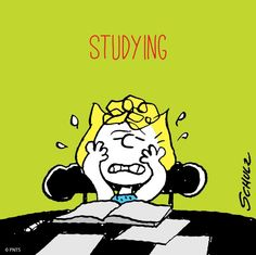My study face...