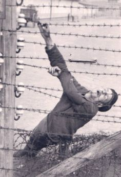 An inmate who committed suicide on the electrified fence.Auschwitz, Poland, 1943.