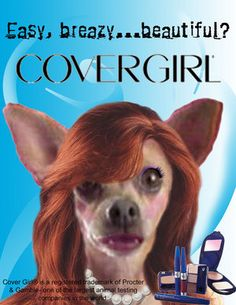 CoverGirl tests on animals