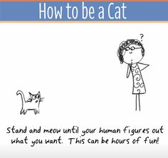 Illustrated: How To Become A Cat Today! I Love Cats, Cute Cats, Funny Cats, Crazy Cat Lady, Crazy Cats, How To Cat, Funny Illustration, Cat Illustrations, Cat Comics