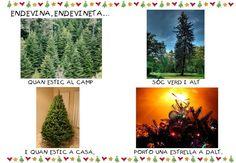 endevinalles hivern i nadal