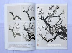"""Chinese Painting Book """"Learn to Paint Plum Blossom Pear Flower"""" Asian Ink Art 