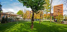 Primavera in Via Campari. Il parco che circonda Le Residenze a Sesto San Giovanni, Milano.