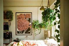 GypsyYaya-Plants In Bohemian Bedrooms...just this idea of a giant carnation! Some good plant pictures here...
