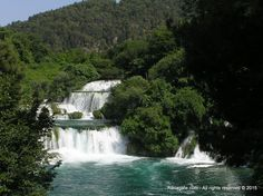 The river Krka is rich with various species of fish, 10 of which are endemic. The great number of birds in National park Krka is also considered a haven and one of the most valuable areas in Europe.