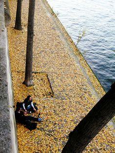 Quais de Seine, Paris