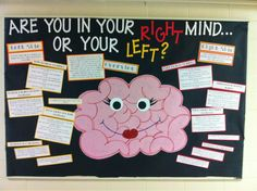girararaffe:  March bulletin board! The differences between and the unique qualities of left- and right-brained individuals!