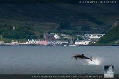 Isle if Skye