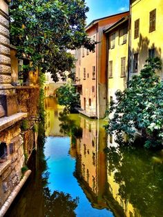 .canale