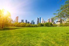 Все мы любим Центральный парк и бывали здесь не один раз. Но вы не знаете, что в извилистых дорожках и таинственных лесах спрятаны менее известные места. В нем есть тайные сады, реликвии из 1800-х годов и уловки, чтобы помочь вам не заблудиться. 1.Артефакт 1811 года В Центральном парке есть скала с большим металлическим болтом выступающим …
