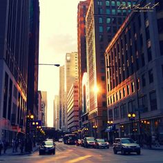 chicago, home of the blues