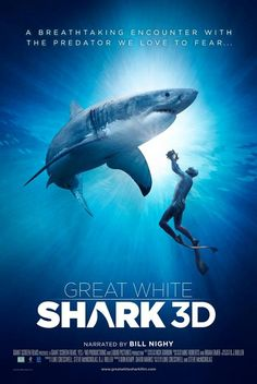 Great White Shark 3D