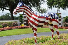 Old Glory from Ocala's Horse Fever since 2001