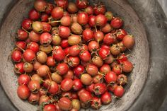 Hawthorn berries can aid circulation and relieve anxiety. Learn more from the new book THE HERBAL APOTHECARY.