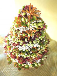 Succulent Topiary Tree | Succulents and Succulent Garden Design | Debra Lee Baldwin