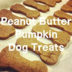 Last weekend, I decided to make some holiday treats for Guido, Stella and friends. The dogs love them, and the ingredients make so many tha...