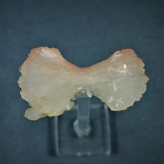"Stilbite "" bow tie "" Wadgaon Pune Maharashtra India Pune, Bows, China, India, Pakistan, Mongolia, Bolivia, Australia, Minerals"