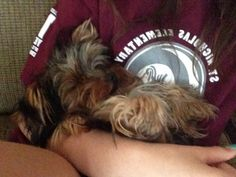 Sleeping like a baby in my arms