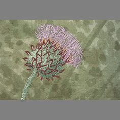 Cardoon.....giant member of the thistle family.....hand embroidery