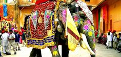 The Elephant Festival is an annual event held every year at Jaipur the capital city of Rajasthan. The Elephant Festival Elephant India, Indian Elephant, Elephant Love, Elephant Art, Colorful Elephant, Elephant Blanket, Elephant Stuff, Elephant Images, Wooden Elephant