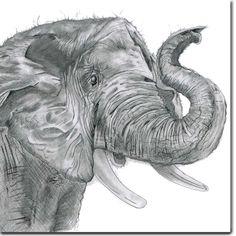 Realistic charcoal drawings elephant ideas рисунки, слоны, р Elephant Sketch, Elephant Love, Elephant Art, Elephant Tattoos, Elephant Drawings, Realistic Animal Drawings, Pencil Drawings Of Animals, Art Drawings, Rendering Art
