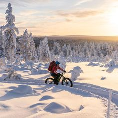 """VisitFinland on Instagram: """"With the sun shining high above the vast horizon and wide tyres rolling smoothly over gravel, rocks and tree roots, fat biking is a fun way…"""" Fat Bike, Tree Roots, Biking, Rocks, Sun, Mountains, Nature, Travel, Instagram"""