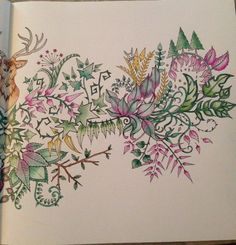 Details From The Deer Head Picture In Enchanted Forest Coloring Book Colorist Is Susan Daniel
