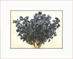 12 Dark Blue Babys Breath Filler Blooms Silk Artificial Flowers   eBay 10.99