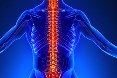 5 Sintomas da Osteoporose Darth Vader, Parts Of The Body, Bones, Thighs, Rock, Posts, Sentences, Foods