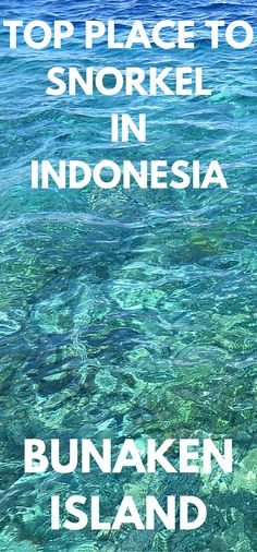 Bunaken Island is known as one of the premier diving and snorkelling locations in the world.  It's located in one of the more unknown parts of Indonesia.