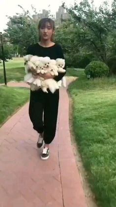 Cute Baby Puppies, Cute Animals Puppies, Super Cute Puppies, Cute Wild Animals, Baby Animals Pictures, Super Cute Animals, Teacup Puppies, Teacup Pomeranian, Fluffy Animals