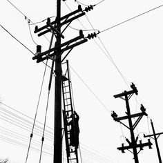 man climbing ladder to work on electrical lines.