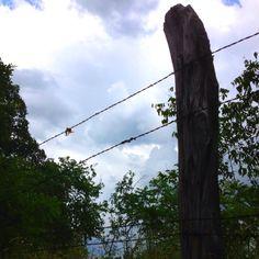 Sky high fence line.