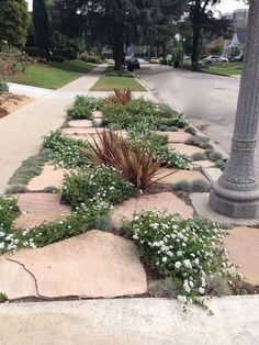 Gorgeous Front Yard Pathway Landscaping Ideas