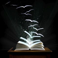 Kinderbücher, Fantasy Bücher, fliegende Bücher
