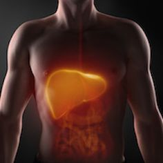 Modern society is a sad state that produces many over-processed livers. When we overeat or eat processed or fried foods, and, anytime we are exposed to environmental pollutants or stress, the liver becomes overworked and overloaded. When the liver is taxed, it can't process toxins and fat in an efficient way. #health #wellness #diet