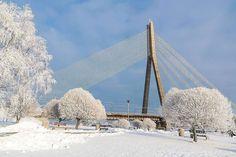 1,904 отметок «Нравится», 6 комментариев — Nils Ušakovs • Нил Ушаков (@nilsusakovs) в Instagram: «Rīga. Vanšu tilts. ☃️ Рига. Вантовый мост.  #riga 📷 @lincalincalinca»