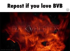 Black Veil Brides one of the best bands ever <3 <3 <3 <3 <3 <3 <3 !!!!!!!