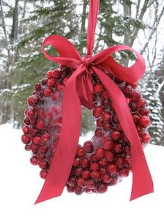 frozen cranberry wreath.  i have also seen this done with apples and with carrots as decorative treats for deer.
