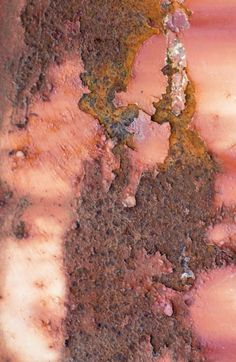 Rust in Pink | Ann Kate Davidson