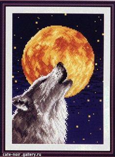 Wilk i Pełnia