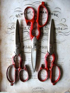 Kitchen scissors are a must-have!  You will never need pizza cutters again!  You will save wear on your cookie sheets.  Also great for quesadillas.