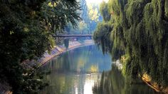 The Bega canal in modern-day Timisoara (Credit: Credit: Urooj Qureshi) Romania Embedded Image Permalink, Travel Inspiration, The Good Place, Places To Visit, River, City, Timisoara Romania, Outdoor, Amazing Places