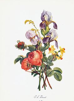 Bouquets by Jean-Louis Prevost botanical print from 1945