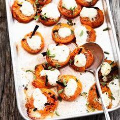 abrikozen met majoraan