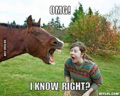 Funny horse with senseless caption - Horses Funny - Funny Horse Meme - - I can't stop laughing. I hate both of these phrases but this is killing me. The post Funny horse with senseless caption appeared first on Gag Dad. Funny Shit, Funny Horse Memes, Funny Horse Pictures, Funny Pictures Can't Stop Laughing, Funny Horses, Funny Love, Funny Memes, Funny Stuff, Funny Things
