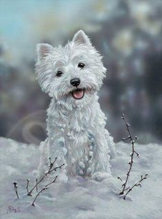 The Snowman,West Highland White Terrier painting by Paul Doyle. Mixed media.
